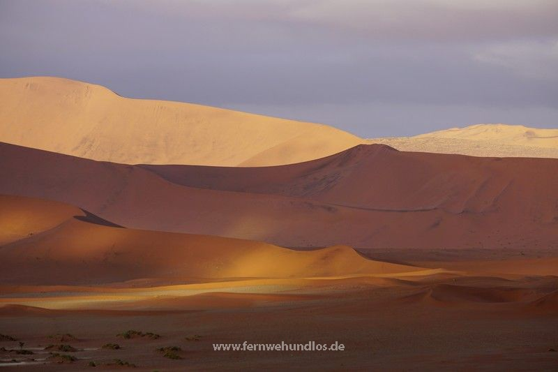 b_0_0_3549_10_images_joomgallery_details_namibia_fotos_8_5306_sossusvlei_cr_20150619_1513957931.jpeg