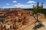b_150_100_15461355_00_images_joomgallery_details_usa-west_bilder_15_4776_bryce-canyon-np_20160618_2081553152.jpeg
