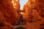 b_170_170_15461355_00_images_joomgallery_details_bilder_s_w_4_0159_bryce-canyon-np_20140822_1906099878.jpeg