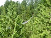 Capilano suspensionbridge