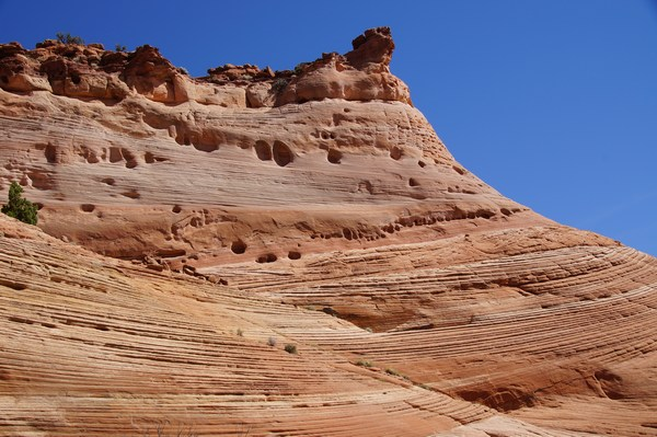 Zebra Canyon Trail