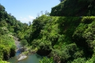 Road-To-Hana_Maui-Island