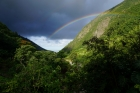 Iao-Valley-State-Park