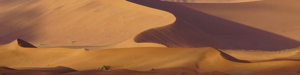 5313_Namib-Naukluft-Park_cr_cr