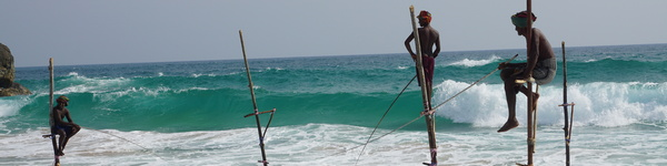 stilt-fishermen_-Sri-Lanka