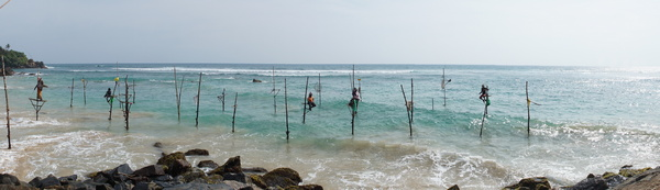 stilt-fishermen_Sri-Lanka_cr